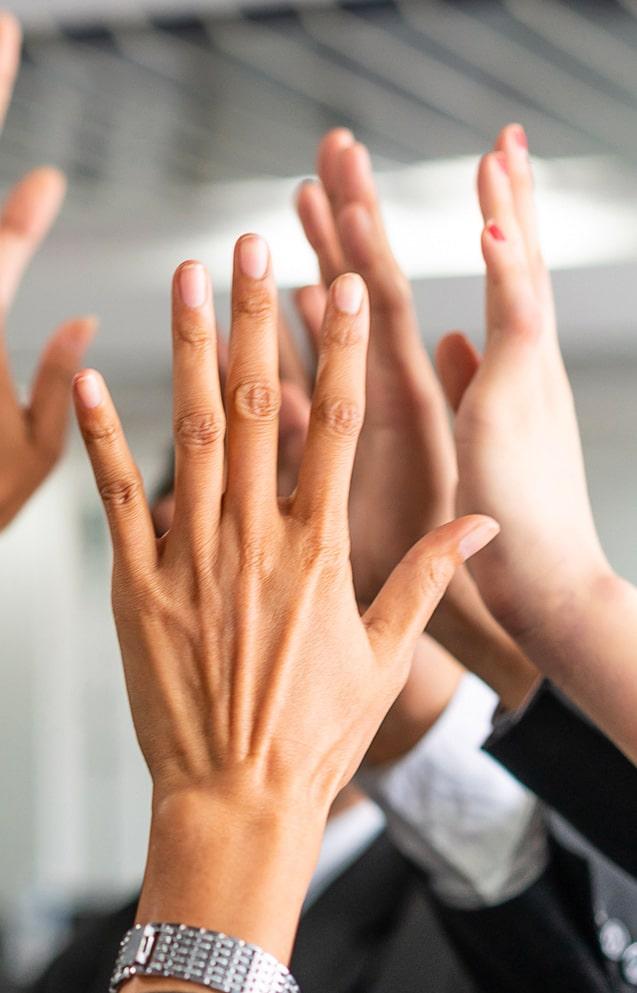 Mani verso l'alto
